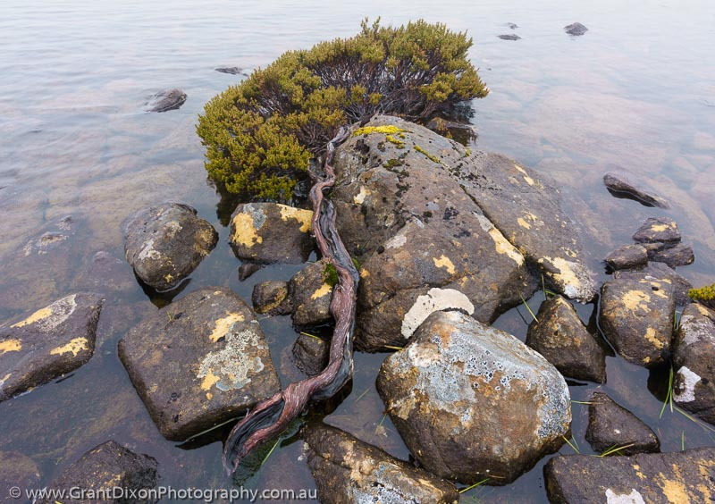 image of Dolerite tarn detail