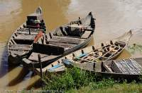 CAMBODIA, Siem Reap. Moored boats at Kompong Phluk, Tonle Sap lake.