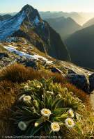Mt Cusack, Fiordland National Park, New Zealand.